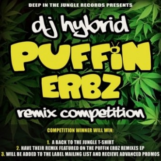 Puffin Erbz Remix Competition