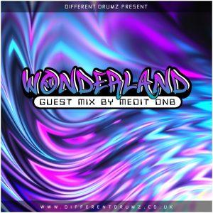 Medit DnB Wonderland Different Drumz Guest Mix